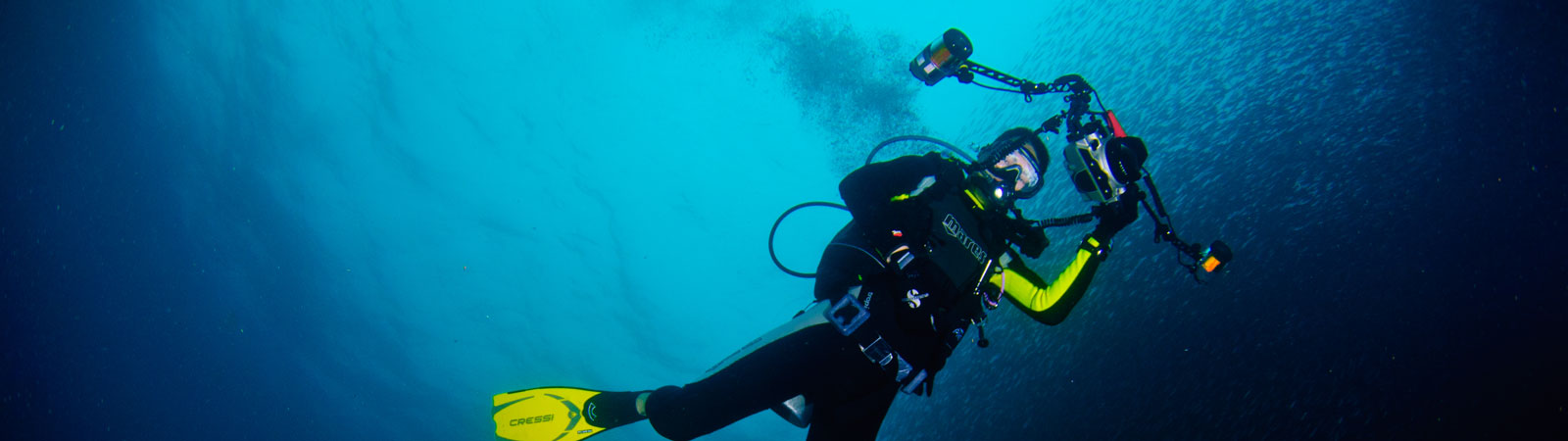 Diving in Cebu
