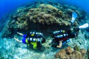 Recreational Rebreather Diver Course