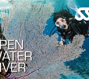 Open Water Diver Course at Kasai Village Dive Center