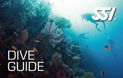 Dive Guide Specialty Course at Kasai Village Dive Centre