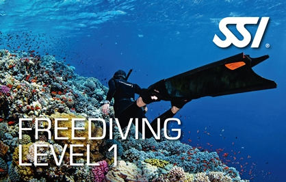 Freediving Level 1 Course at Kasai Village dive Centre