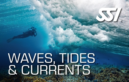 Waves, Tides & Currents Course at Kasai Village Dive Resort